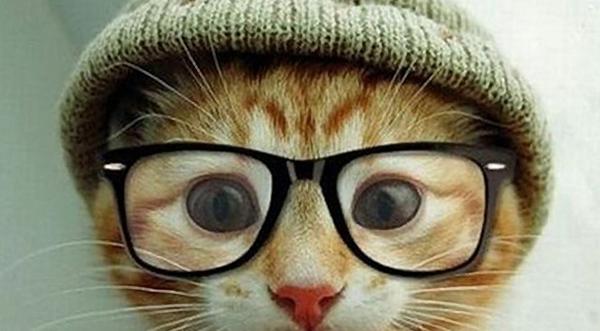 BLOGUN: 4 самых распространённых ошибки при создании «шапки» блога — хедера