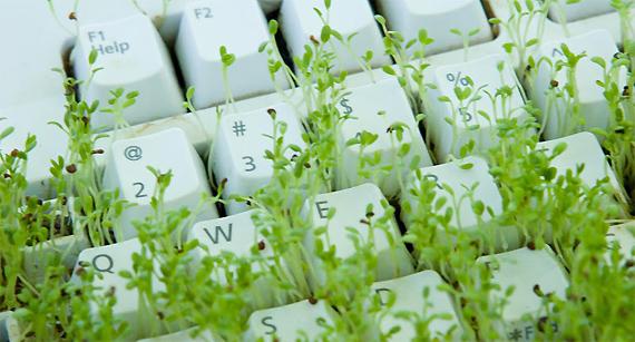Почему не рекомендуется отдавать бизнес-блог на аутсорсинг